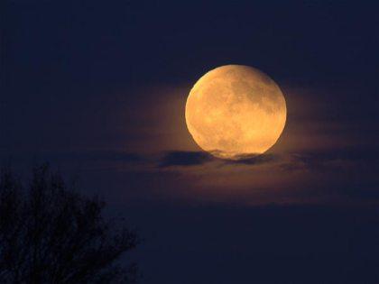 partial-lunar-eclipse-2013-asia-africa-australia-europe_66670_600x450